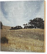Oak Trees In A California Landscape Wood Print