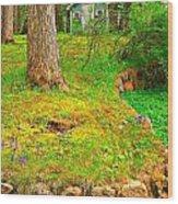 Oakwood Wood Print