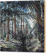 Oasis At Death Valley Wood Print