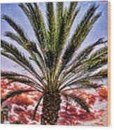 Oasis Palms Wood Print
