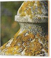 Obelisk Wood Print