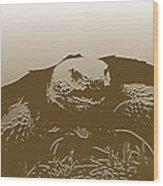 Obscure Samaritan Wood Print by Sean Green