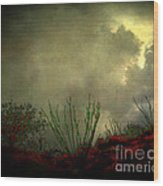 Occotillo And Desert Storm Wood Print