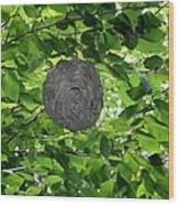 Occupied Bee Hive Wood Print