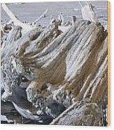Ocean Driftwood Landscape Art Prints Coastal Views Wood Print by Baslee Troutman