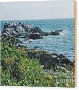 Ocean Drive Newport Ri Wood Print