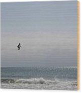 Ocean Flight Florida Wood Print