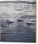 Ocean's Lament Wood Print