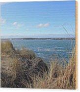 Beach Oceanview Wood Print