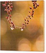 October Bokeh Wood Print