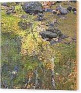 October Colors Reflected Wood Print