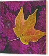 October Hues Wood Print by Paul Wear