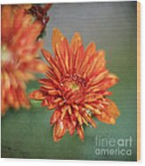 October Mums Wood Print