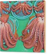 Octopus Attractively Arranged Wood Print