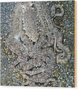 Octopus On The Seabed Wood Print