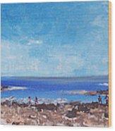 Odiorne Beach Park Nh Wood Print by Michel Croteau