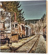 Off Track II Wood Print