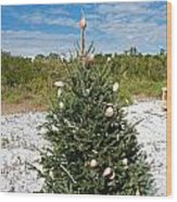 Oh Christmas Tree Florida Style Wood Print