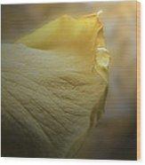 Kiss Of Dew Wood Print