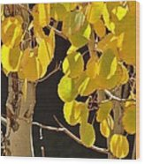 Oh Those Golden Leaves Wood Print