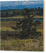 Ohop Valley Rainier Wood Print