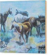 Oil Pastel2 Wood Print