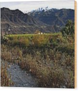 Ojai Valley Wood Print
