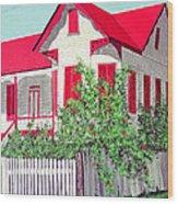 Old Belizean Home Wood Print