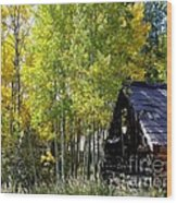 Old Cabin In The Golden Aspens Wood Print by Donna Parlow
