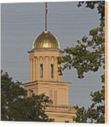 Old Capitol Wood Print by Diane Zumbach