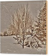 Old Country Christmas Wood Print