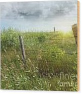 Old Country Fence On The Prairies Wood Print