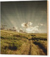 Old Country Road And Sunset Wood Print
