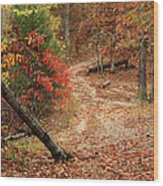 Old Country Road In Shannon County Wood Print