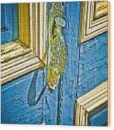 Old Door New Paint Wood Print
