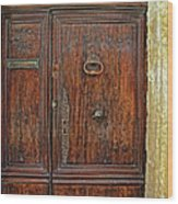 Old Door Study Provence France Wood Print