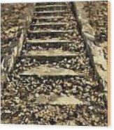 Old Dried Leaves Wood Print