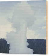 Old Faithful Geyser Erupts About Once Wood Print