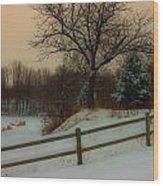 Old Fashiion Winter Wood Print