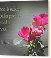 Old Fashion Pink Roses II Cor.12v9 Wood Print by Linda Phelps