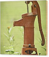 Old Fashioned Water Pump Wood Print