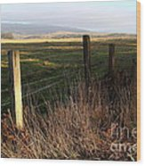 Old Fence And Landscape At Point Reyes California . 7d9968 Wood Print