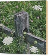 Old Fence And Wildflowers Wood Print