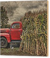 Old Ford Truck Wood Print by Pat Abbott