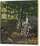 Old Frontier Wagon 1 Wood Print