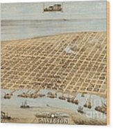 Old Galveston Map Wood Print