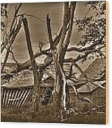 Old Homestead Wood Print by Shane Bechler