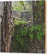 Old Jamaican Sugar Mill Wood Print