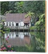 Old Lake With An Old Hut Wood Print
