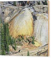 Old Mine Colorado Wood Print